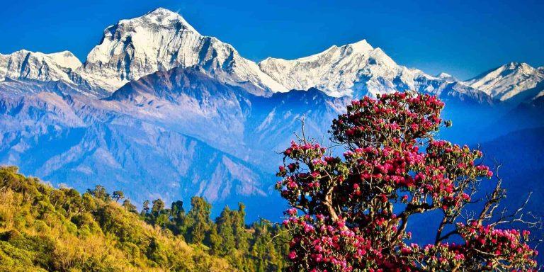 onovlennya-pravil-vizdu-v-nepal-katmandu-1